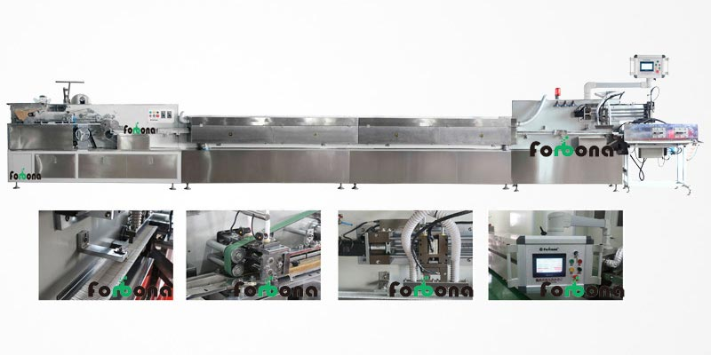 FBN-01S Automatic Cotton Swab Machine